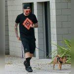 Na ltima segundafeira 24 Adam aproveitou para passear um pouquinhohellip